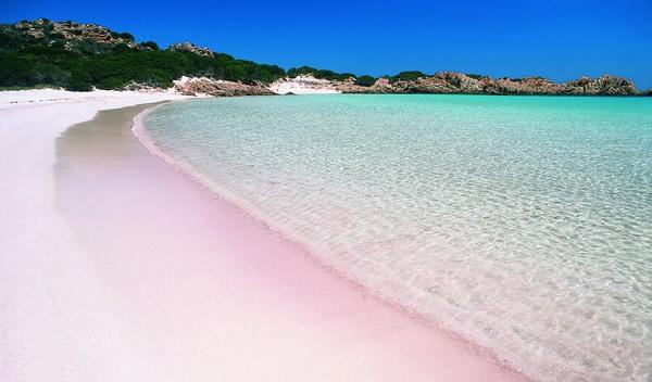 Top 30 spiagge in sardegna blualghero sardinia for Isola che da il nome a un golfo della sardegna