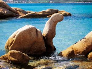 roccia-tartaruga-loiri-porto-san-paolo