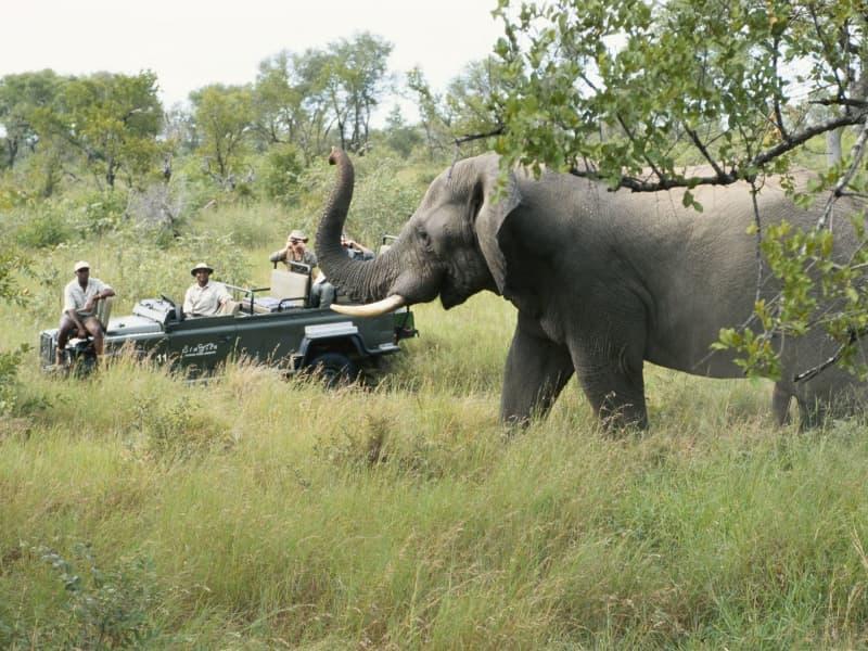 Explorer le monde: Afrique du Sud