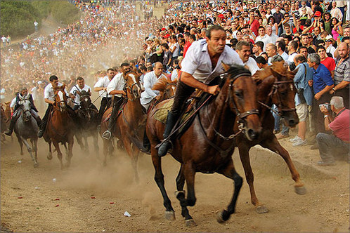 the crazy horse race of Sedilo