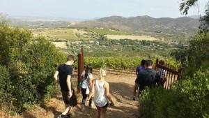 wine-tour-sardinia